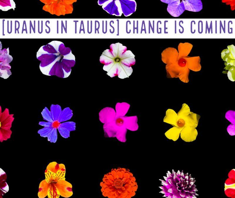 [Uranus in Taurus] Change is coming