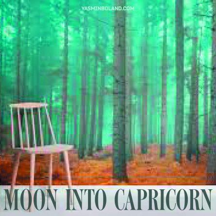 Daily Moon into Capricorn