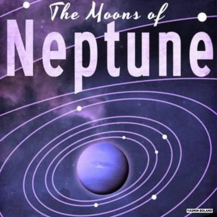 The energies of 2019 through the eyes of Neptune