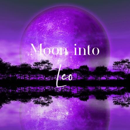 Daily Moon Into Leo