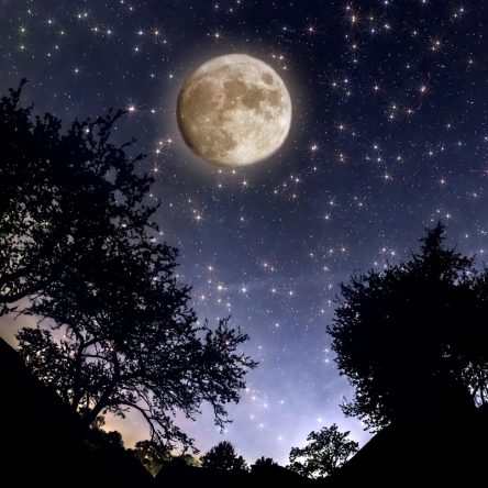 How to tell where the Moon is anytime …